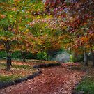 Autumn Dreams - Mt Wilson NSW - The HDR Experience by Philip Johnson