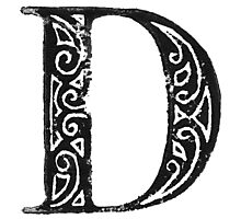 Serif Stamp Type - Letter D Photographic Print