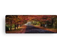 Autumn Splendour- The HDR Experience Canvas Print
