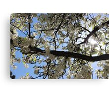 Ironic Trees For Your Ironic Season Canvas Print