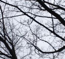 Black and white branches  Sticker
