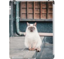 Cat, Adso, Temple iPad Case/Skin