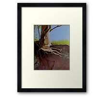 Holly Roots Framed Print