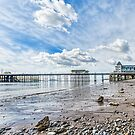 Penarth Pier Morning Light 2 by Steve Purnell