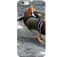 """"""" Walking through the woods, came across this chap"""" iPhone Case/Skin"""