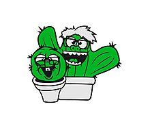 2 friends team nerd geek couple face funny comic cunning hornbrille nerdy little green cactus, desert Photographic Print