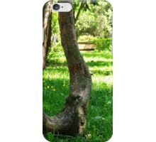 The Harp Of The Trees iPhone Case/Skin