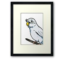 Blue Budgie with Moustache Framed Print