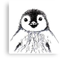 Baby Penguin  Canvas Print