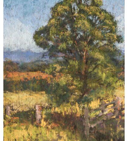 Beechwood - plein air Sticker