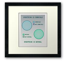 Everything is. Framed Print