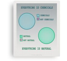 Everything is. Canvas Print