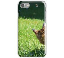 Cat watching a bee iPhone Case/Skin
