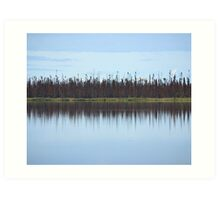 Burned Forest Lake (Anchorage, Alaska) Art Print