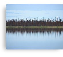 Burned Forest Lake (Anchorage, Alaska) Canvas Print