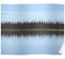 Burned Forest Lake (Anchorage, Alaska) Poster