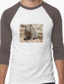 Squirrel Friends  Men's Baseball ¾ T-Shirt