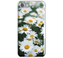 Daisies iPhone Case/Skin