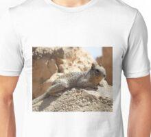Squirrel Friends 2 Unisex T-Shirt