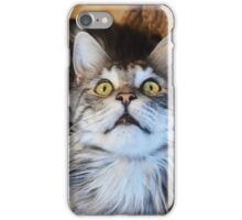 I´m the king iPhone Case/Skin