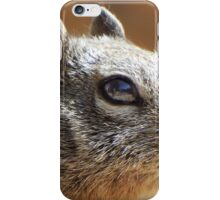 Macro Squirrel Eye iPhone Case/Skin