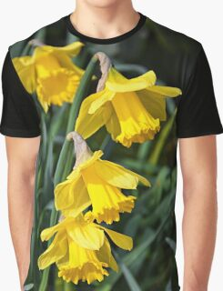 3 Daffodils on top of eachohter. Graphic T-Shirt