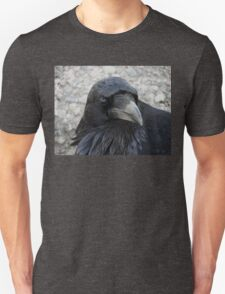 Raven in my Soul T-Shirt