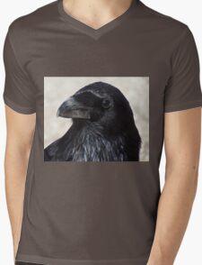Raven 06 Mens V-Neck T-Shirt
