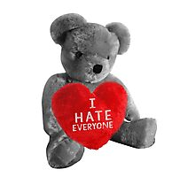 I HATE EVERYONE Photographic Print