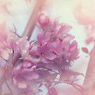 Pretty as a flower by Angela King-Jones