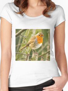 Beautiful Robin Redbreast Bird Women's Fitted Scoop T-Shirt