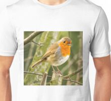 Beautiful Robin Redbreast Bird Unisex T-Shirt