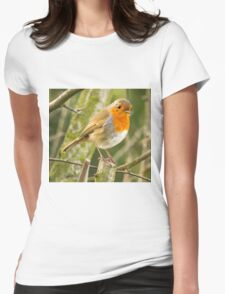 Beautiful Robin Redbreast Bird Womens Fitted T-Shirt