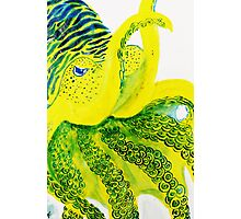 Banana Cuttlefish Design Photographic Print