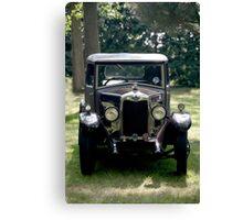 Riley automobile Canvas Print
