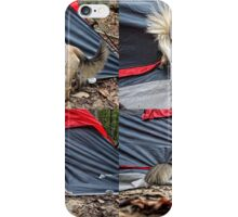 Tent Probs iPhone Case/Skin