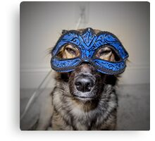 Masked Puppy Canvas Print
