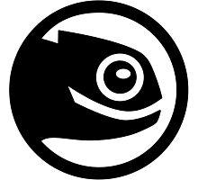 Open suse logo Photographic Print