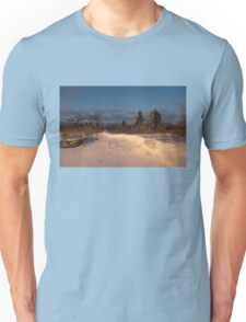 The Morning After the Snowstorm Unisex T-Shirt
