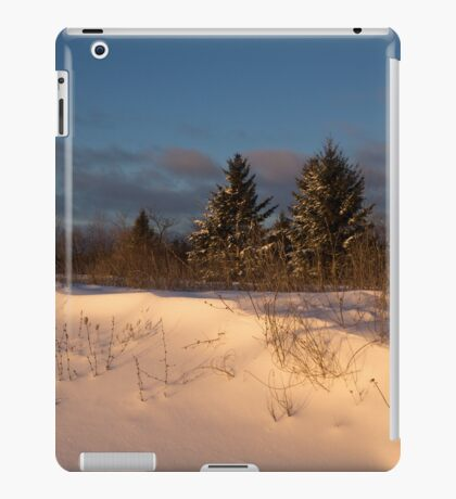 The Morning After the Snowstorm iPad Case/Skin