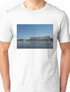 Seagull Convention on Thin Ice Unisex T-Shirt