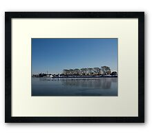 Seagull Convention on Thin Ice Framed Print