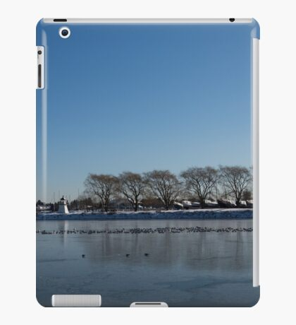 Seagull Convention on Thin Ice iPad Case/Skin