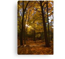 Autumn Forest Glow - Impressions Of Fall Canvas Print