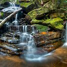 Lower Somersby Falls, Australia by Erik Schlogl