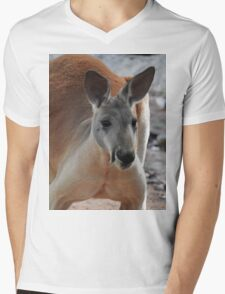 Red Kangaroo Mens V-Neck T-Shirt