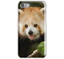 Red Panda iPhone Case/Skin