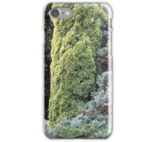 Royal Botanic Gardens, Hobart 02 iPhone Case/Skin