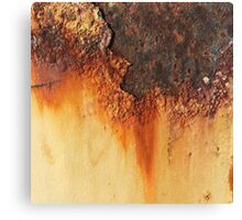 Rustic at golden hour Canvas Print