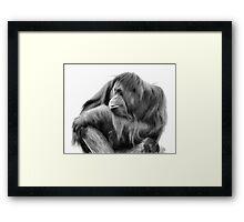 Orangutan in Black & White Framed Print